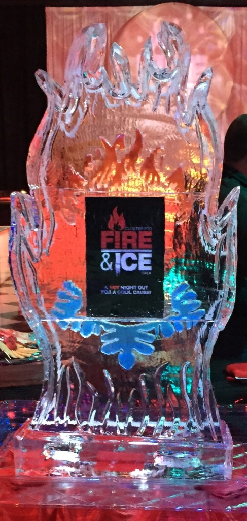 Fire & Ice Gala