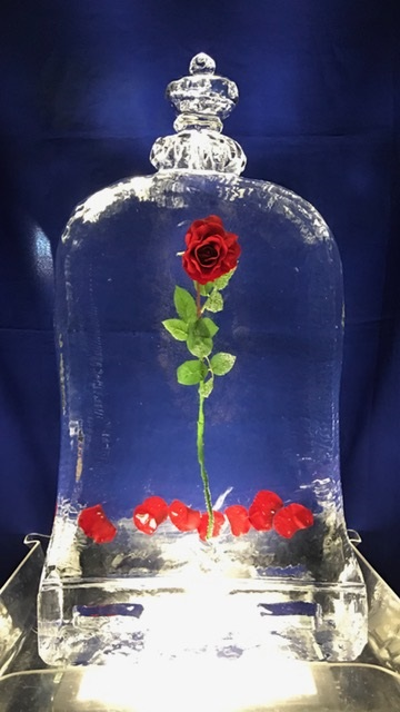 Rose Freeze in 1091